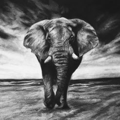 Strathmore 2019 Online Workshop Series 1: Realistic Drawing with Charcoal